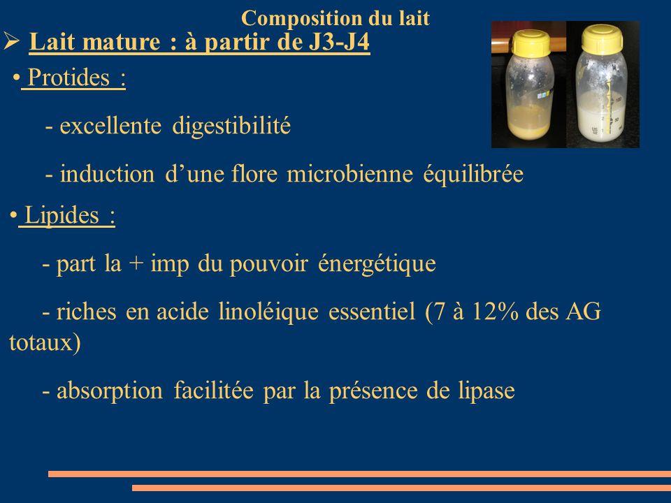 Composition du lait Lait mature : à partir de J3-J4 Protides : - excellente digestibilité - induction dune flore microbienne équilibrée Lipides : - pa
