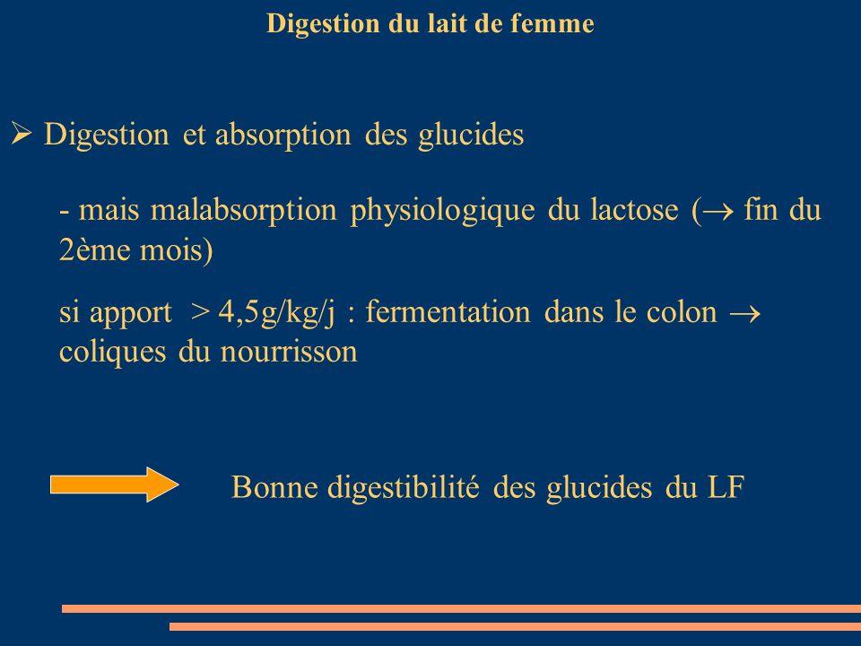 Digestion du lait de femme Digestion et absorption des glucides - mais malabsorption physiologique du lactose ( fin du 2ème mois) si apport > 4,5g/kg/
