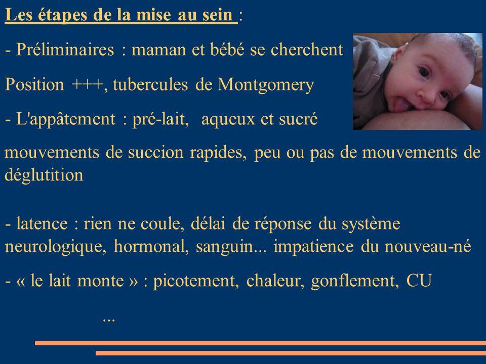 Les étapes de la mise au sein : - Préliminaires : maman et bébé se cherchent Position +++, tubercules de Montgomery - L'appâtement : pré-lait, aqueux