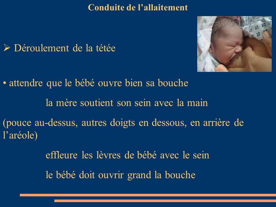 Conduite de lallaitement attendre que le bébé ouvre bien sa bouche la mère soutient son sein avec la main (pouce au-dessus, autres doigts en dessous,