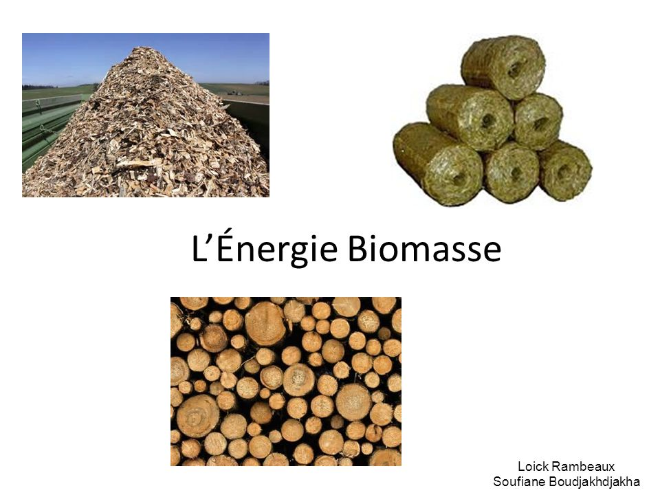 LÉnergie Biomasse Loick Rambeaux Soufiane Boudjakhdjakha