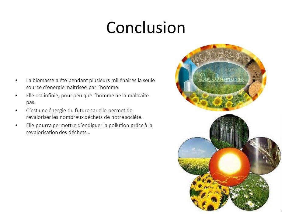 Conclusion La biomasse a été pendant plusieurs millénaires la seule source dénergie maîtrisée par lhomme.