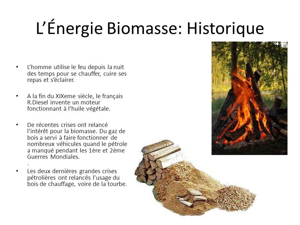 LÉnergie Biomasse: Historique Lhomme utilise le feu depuis la nuit des temps pour se chauffer, cuire ses repas et séclairer.