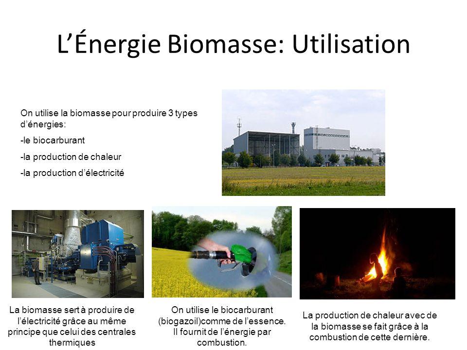 LÉnergie Biomasse: Utilisation On utilise la biomasse pour produire 3 types dénergies: -le biocarburant -la production de chaleur -la production délectricité La production de chaleur avec de la biomasse se fait grâce à la combustion de cette dernière.