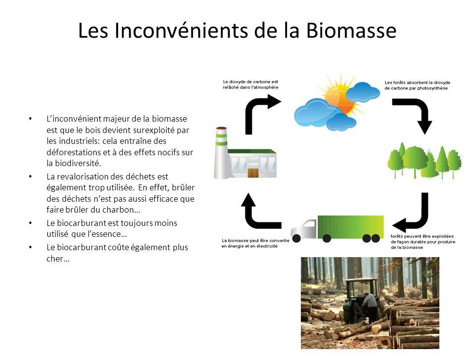 Les Inconvénients de la Biomasse Linconvénient majeur de la biomasse est que le bois devient surexploité par les industriels: cela entraîne des déforestations et à des effets nocifs sur la biodiversité.