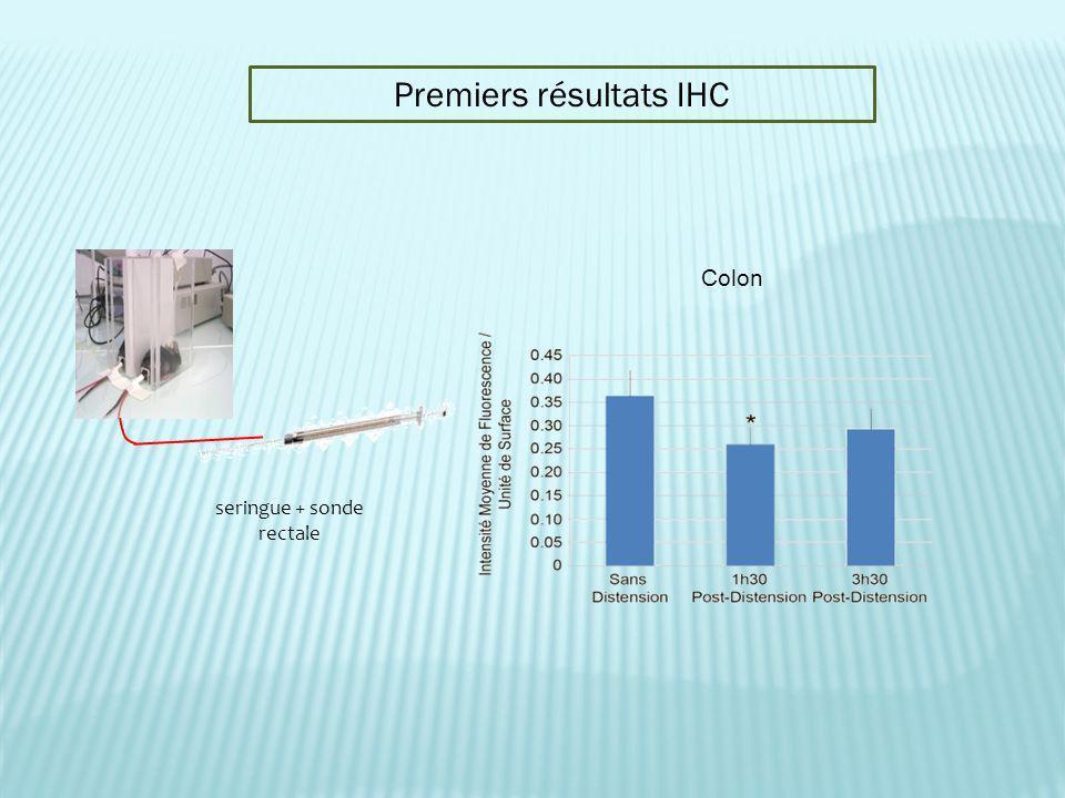 Premiers résultats IHC Colon seringue + sonde rectale
