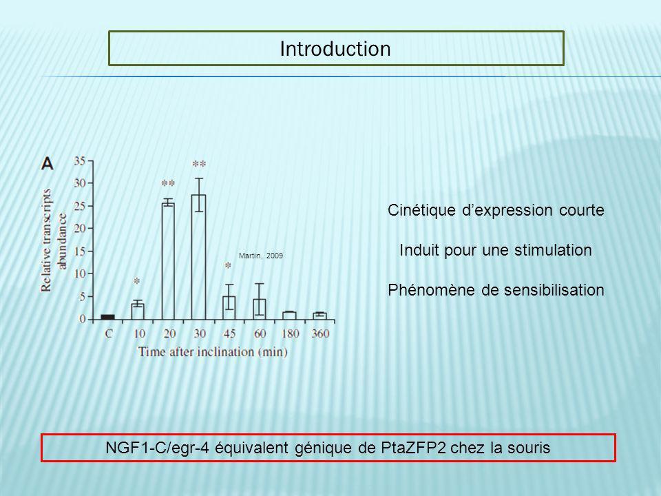 Introduction Martin, 2009 Cinétique dexpression courte Induit pour une stimulation Phénomène de sensibilisation NGF1-C/egr-4 équivalent génique de Pta