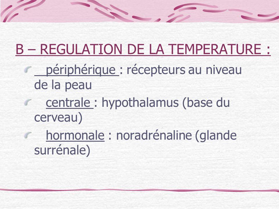 B – REGULATION DE LA TEMPERATURE : périphérique : récepteurs au niveau de la peau centrale : hypothalamus (base du cerveau) hormonale : noradrénaline