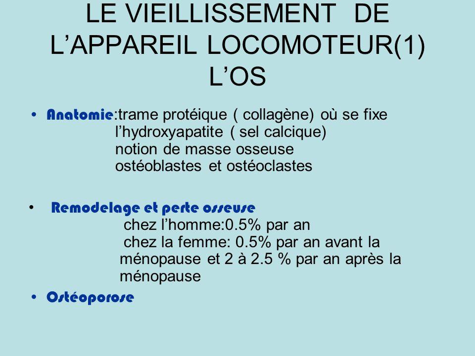 LE VIEILLISSEMENT DE LAPPAREIL LOCOMOTEUR(1) LOS Anatomie :trame protéique ( collagène) où se fixe lhydroxyapatite ( sel calcique) notion de masse osseuse ostéoblastes et ostéoclastes Remodelage et perte osseuse chez lhomme:0.5% par an chez la femme: 0.5% par an avant la ménopause et 2 à 2.5 % par an après la ménopause Ostéoporose