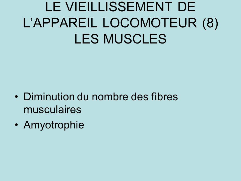 LE VIEILLISSEMENT DE LAPPAREIL LOCOMOTEUR (8) LES MUSCLES Diminution du nombre des fibres musculaires Amyotrophie