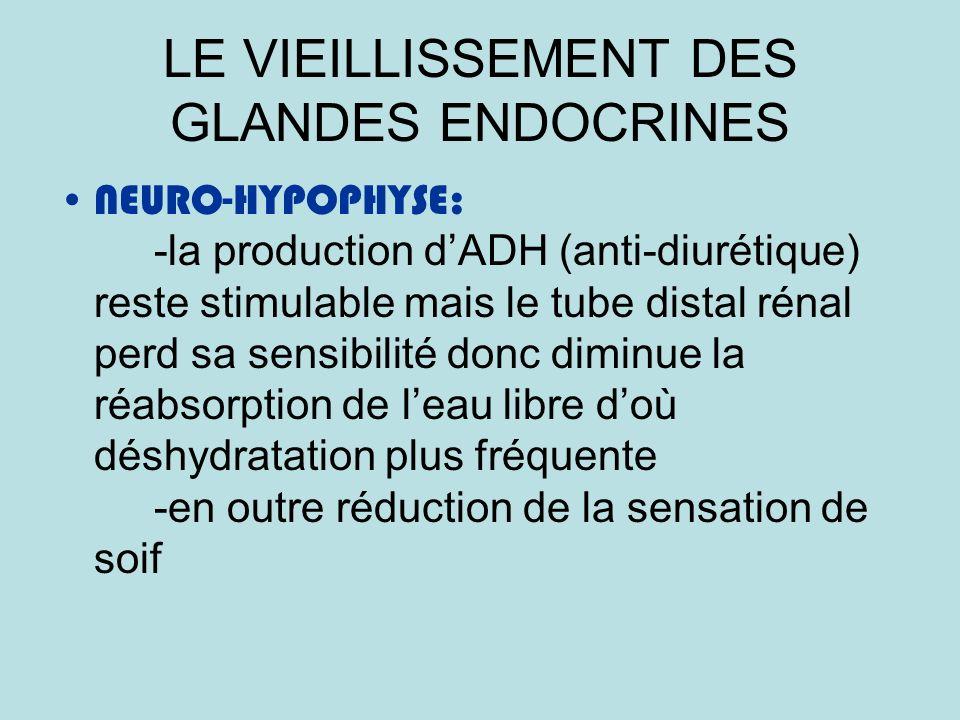 LE VIEILLISSEMENT DES GLANDES ENDOCRINES NEURO-HYPOPHYSE: -la production dADH (anti-diurétique) reste stimulable mais le tube distal rénal perd sa sensibilité donc diminue la réabsorption de leau libre doù déshydratation plus fréquente -en outre réduction de la sensation de soif