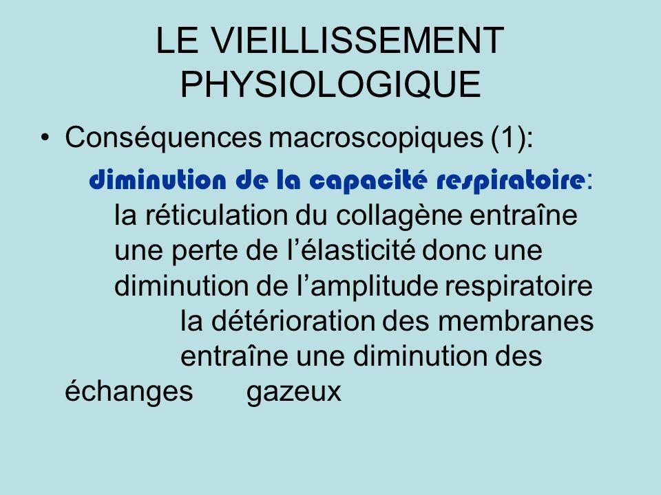 LE VIEILLISSEMENT PHYSIOLOGIQUE Conséquences macroscopiques (1): diminution de la capacité respiratoire : la réticulation du collagène entraîne une perte de lélasticité donc une diminution de lamplitude respiratoire la détérioration des membranes entraîne une diminution des échanges gazeux