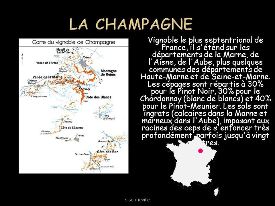 Vignoble le plus septentrional de France, il s'étend sur les départements de la Marne, de l'Aisne, de l'Aube, plus quelques communes des départements