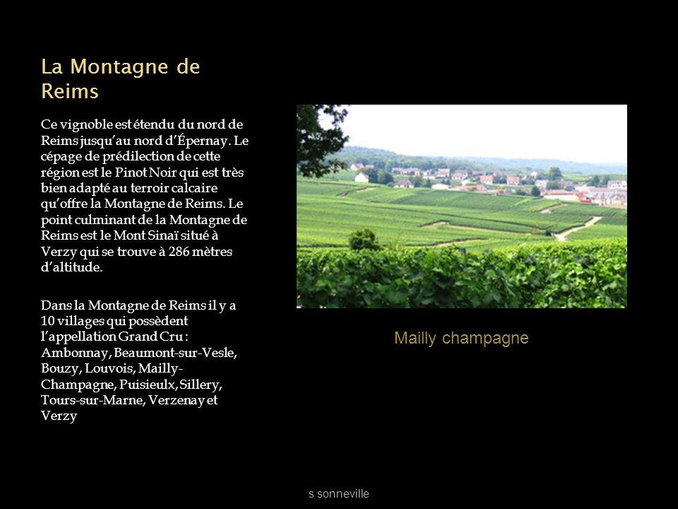 La Montagne de Reims Ce vignoble est étendu du nord de Reims jusquau nord dÉpernay. Le cépage de prédilection de cette région est le Pinot Noir qui es
