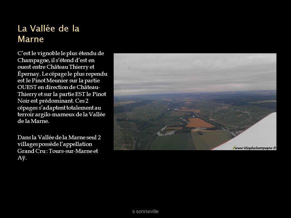 La Vallée de la Marne Cest le vignoble le plus étendu de Champagne, il sétend dest en ouest entre Château Thierry et Épernay. Le cépage le plus repend