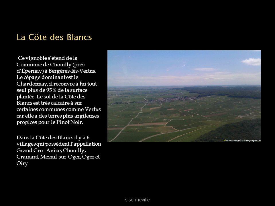 La Côte des Blancs Ce vignoble sétend de la Commune de Chouilly (près dÉpernay) à Bergères-lès-Vertus. Le cépage dominant est le Chardonnay, il recouv