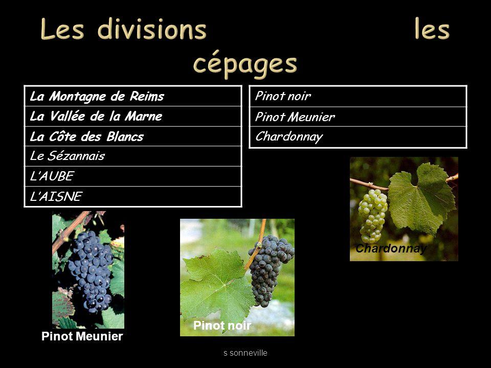 La Montagne de Reims La Vallée de la Marne La Côte des Blancs Le Sézannais LAUBE LAISNE Pinot noir Pinot Meunier Chardonnay s sonneville Pinot Meunier