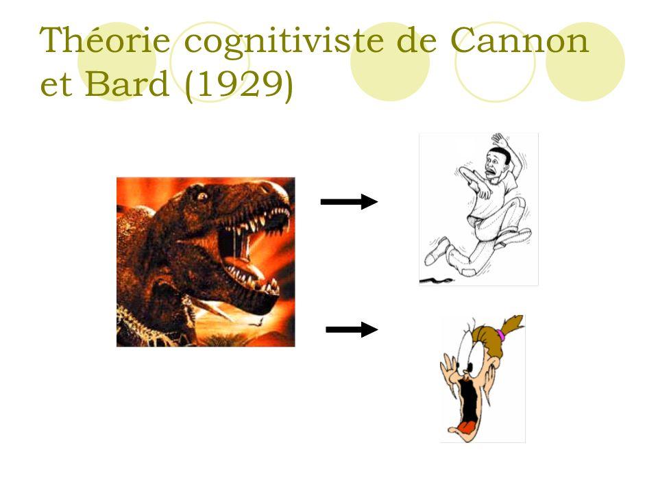 Théorie cognitiviste de Cannon et Bard (1929)
