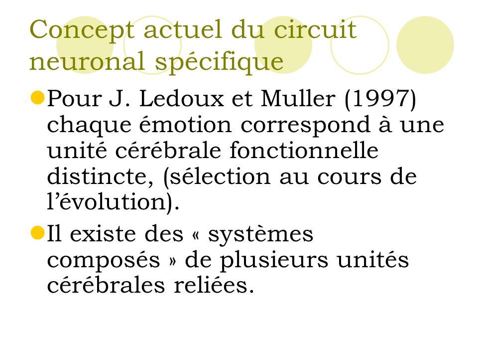 Concept actuel du circuit neuronal spécifique Pour J.