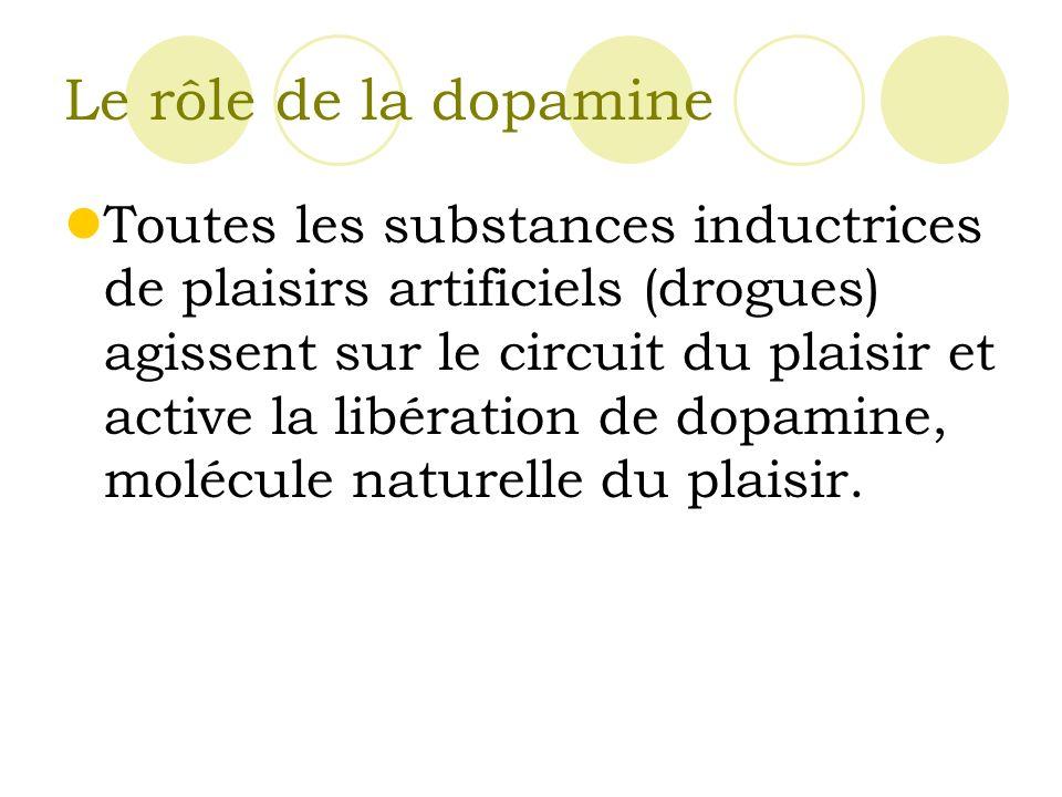 Le rôle de la dopamine Toutes les substances inductrices de plaisirs artificiels (drogues) agissent sur le circuit du plaisir et active la libération de dopamine, molécule naturelle du plaisir.