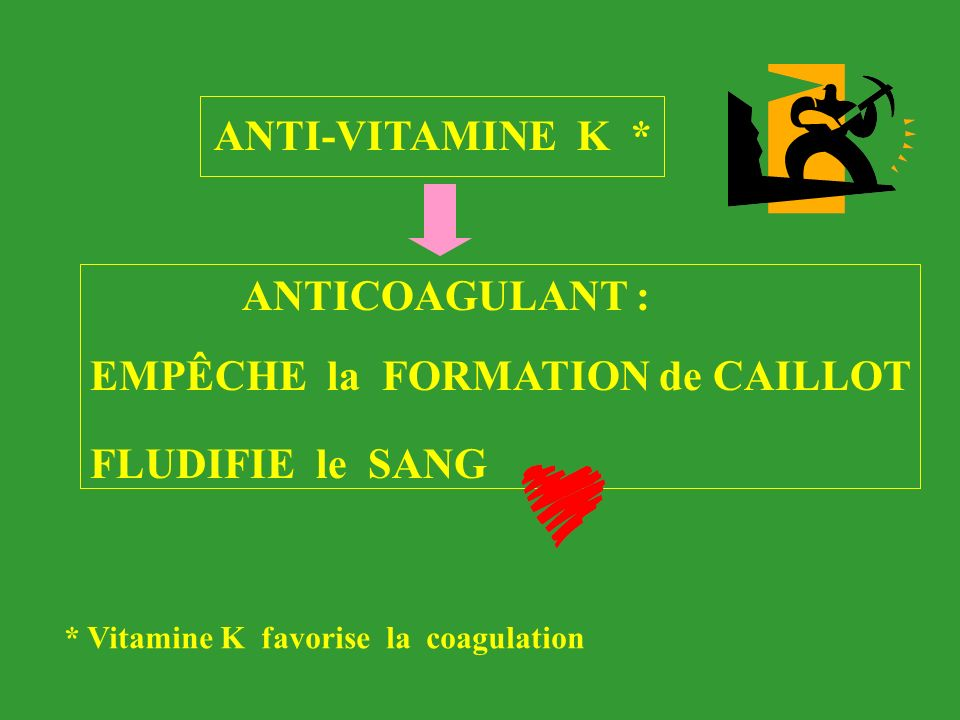 ANTICOAGULANT : ANTI-VITAMINE K * EMPÊCHE la FORMATION de CAILLOT * Vitamine K favorise la coagulation FLUDIFIE le SANG