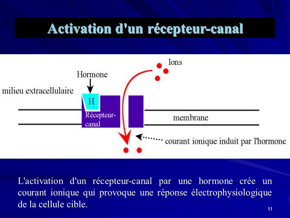 10 Action spécifique des hormones sur leurs cellules cibles grâce aux récepteurs hormonaux.