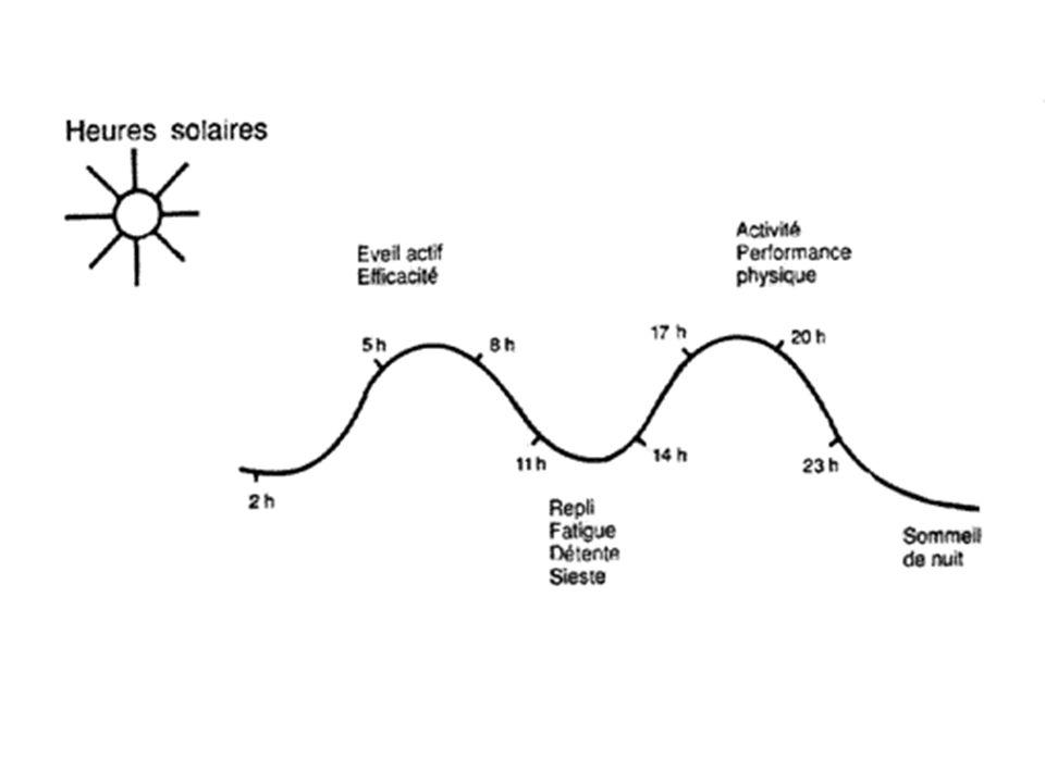 Exemples de Variation de paramètres biochimiques et physiologiques –Productions hormonales : Cycle du cortisol, avec une production maximale à 8h le matin diminution progressive dans la journée et minimale à 0h.