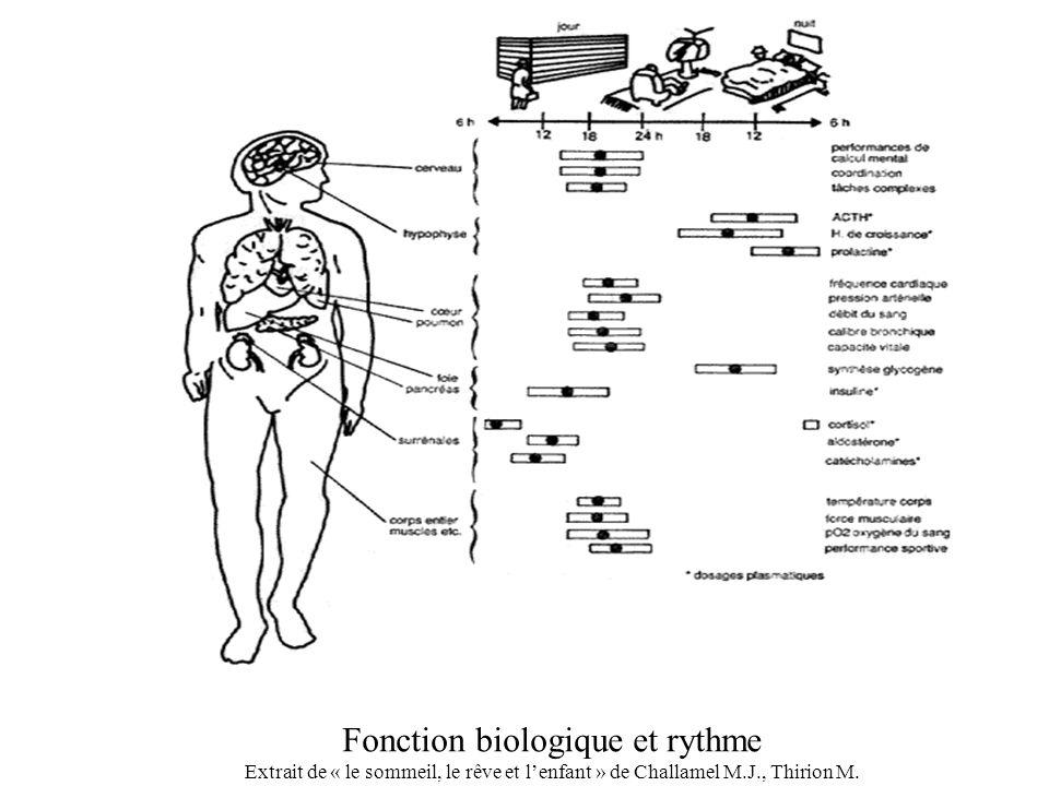 Fonction biologique et rythme Extrait de « le sommeil, le rêve et lenfant » de Challamel M.J., Thirion M.
