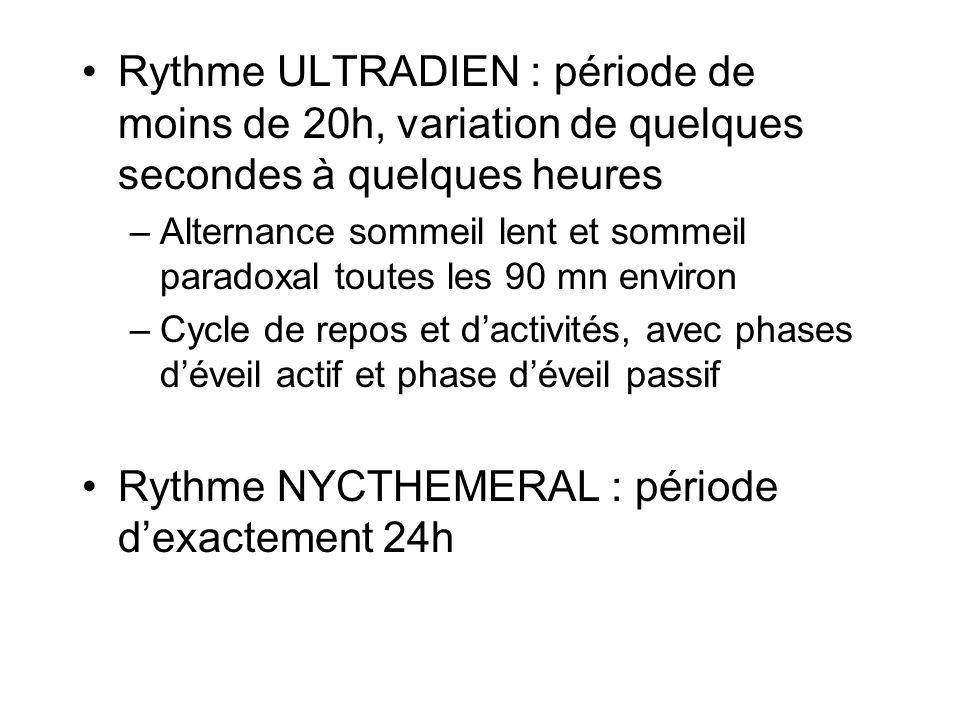 Rythme ULTRADIEN : période de moins de 20h, variation de quelques secondes à quelques heures –Alternance sommeil lent et sommeil paradoxal toutes les