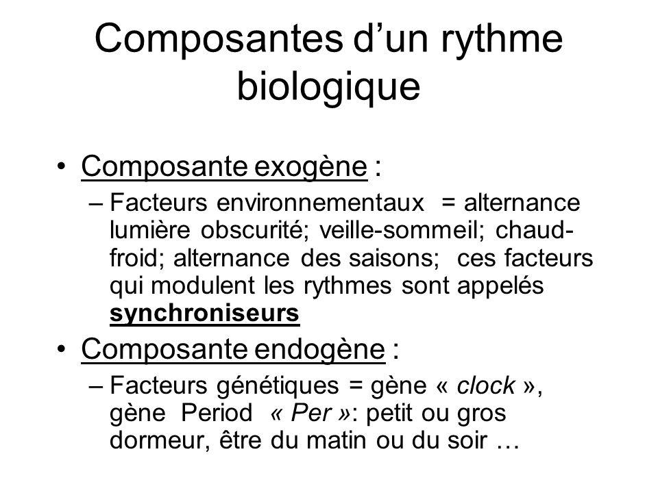 Composantes dun rythme biologique Composante exogène : –Facteurs environnementaux = alternance lumière obscurité; veille-sommeil; chaud- froid; altern