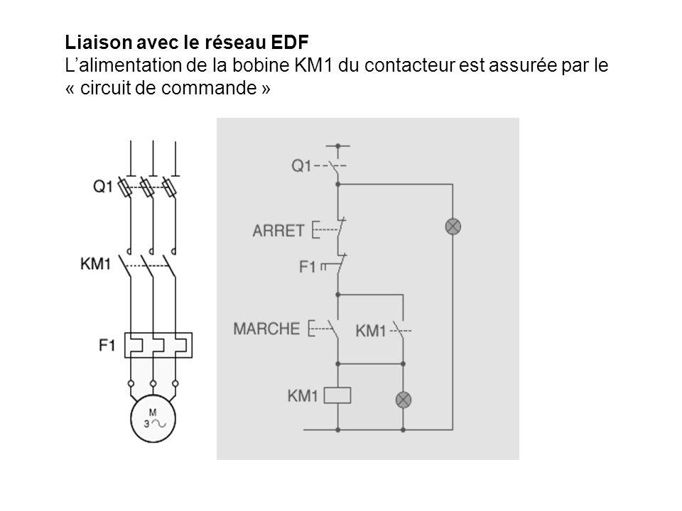 Liaison avec le réseau EDF Lalimentation de la bobine KM1 du contacteur est assurée par le « circuit de commande »