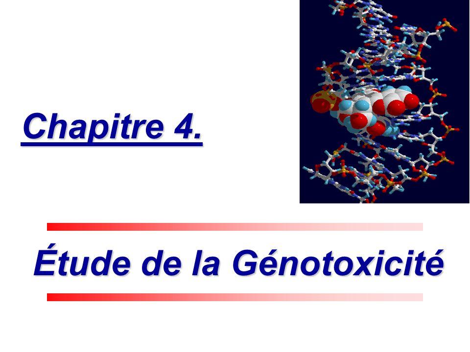 Étude de la Génotoxicité Étude de la Génotoxicité Chapitre 4.