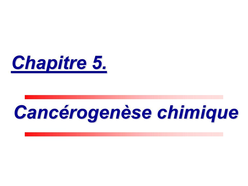 Cancérogenèse chimique Cancérogenèse chimique Chapitre 5.