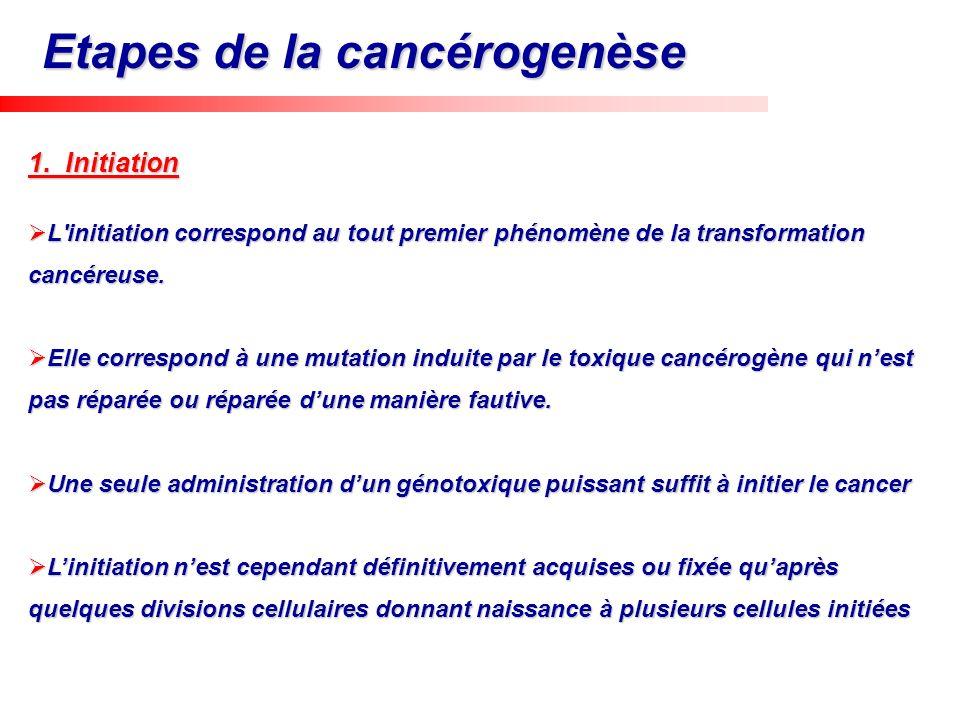 1. Initiation L'initiation correspond au tout premier phénomène de la transformation cancéreuse. L'initiation correspond au tout premier phénomène de
