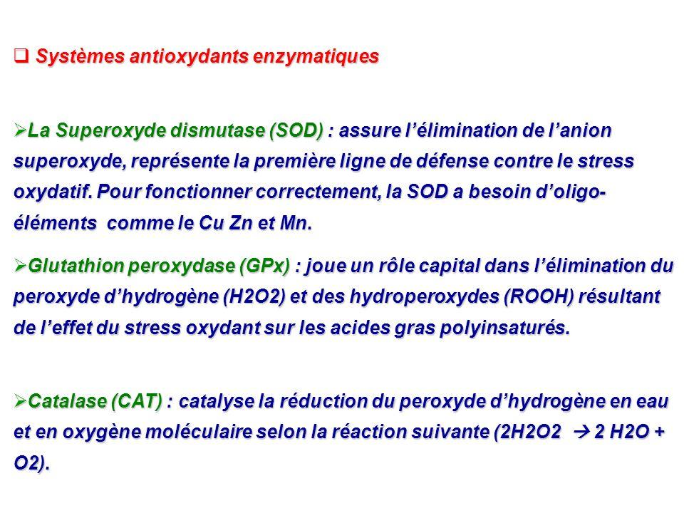 Systèmes antioxydants enzymatiques Systèmes antioxydants enzymatiques La Superoxyde dismutase (SOD) : assure lélimination de lanion superoxyde, représ