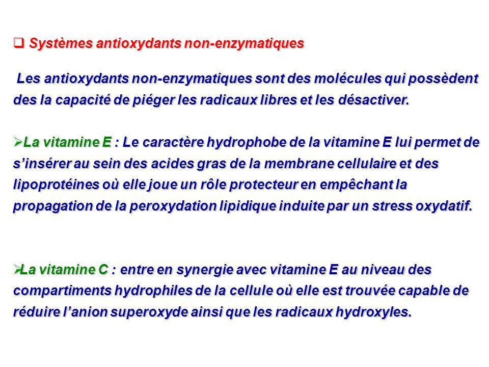 Systèmes antioxydants non-enzymatiques Systèmes antioxydants non-enzymatiques Les antioxydants non-enzymatiques sont des molécules qui possèdent des l