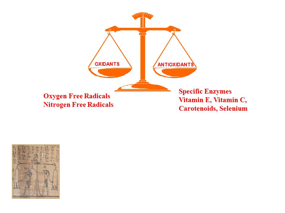 ANTIOXIDANTS OXIDANTS Oxygen Free Radicals Nitrogen Free Radicals Specific Enzymes Vitamin E, Vitamin C, Carotenoids, Selenium