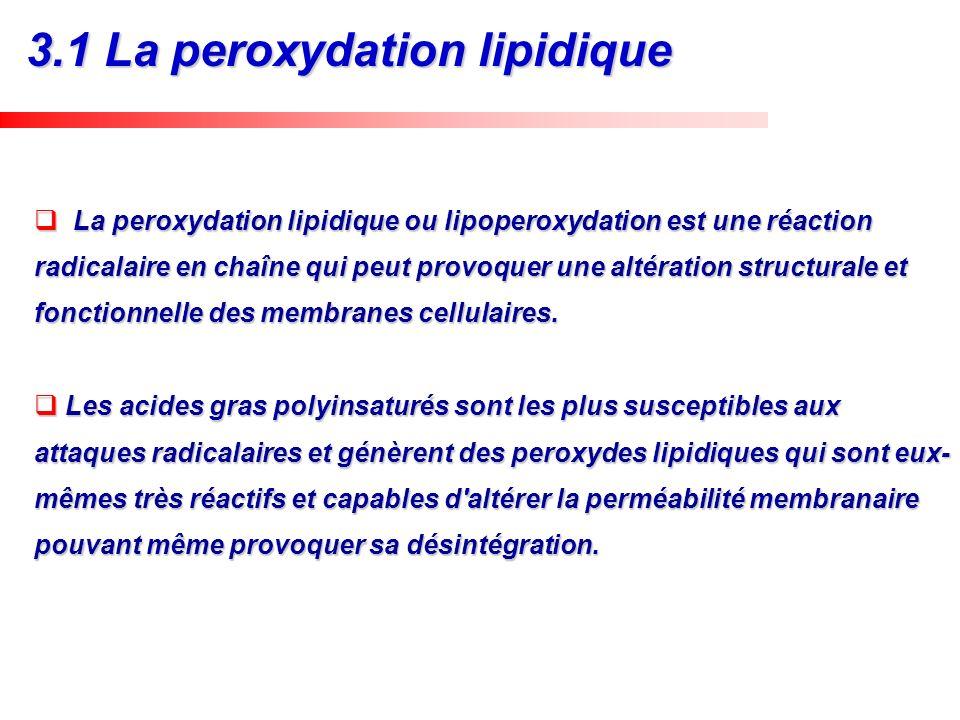La peroxydation lipidique ou lipoperoxydation est une réaction radicalaire en chaîne qui peut provoquer une altération structurale et fonctionnelle de
