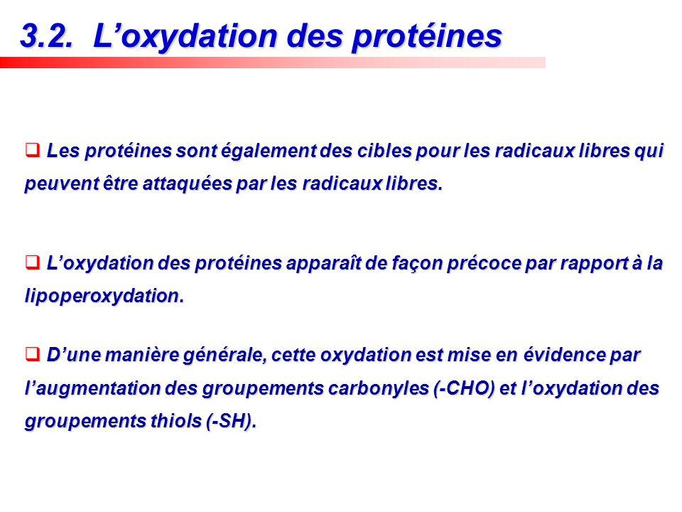 Les protéines sont également des cibles pour les radicaux libres qui peuvent être attaquées par les radicaux libres. Les protéines sont également des