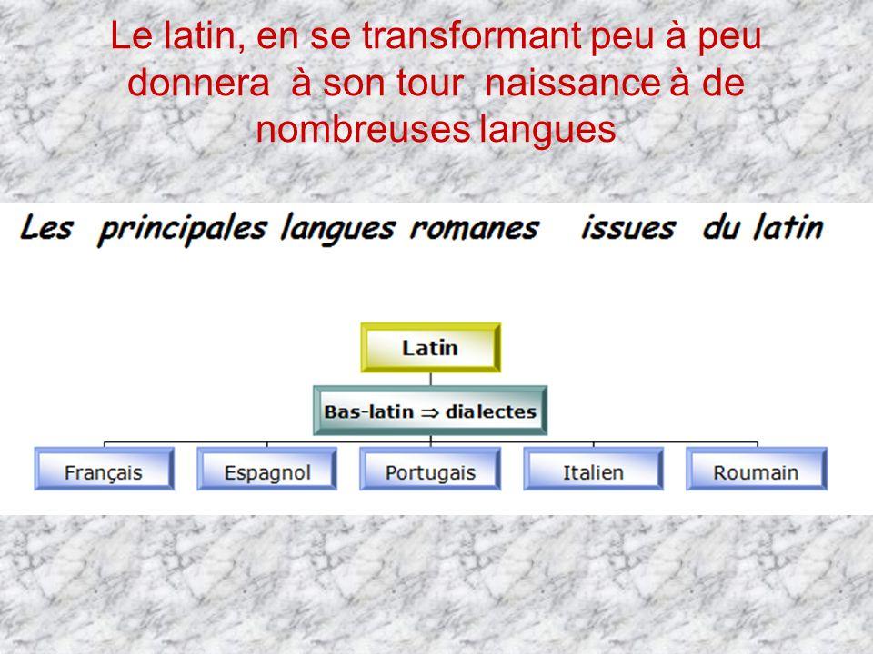 Le latin, en se transformant peu à peu donnera à son tour naissance à de nombreuses langues