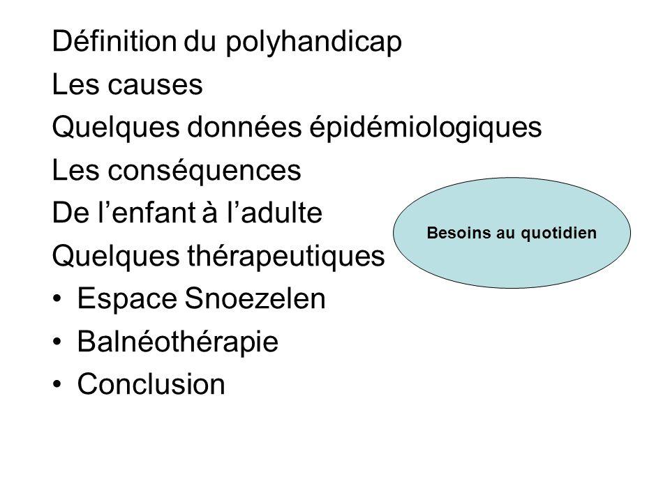 Définition du polyhandicap Les causes Quelques données épidémiologiques Les conséquences De lenfant à ladulte Quelques thérapeutiques Espace Snoezelen