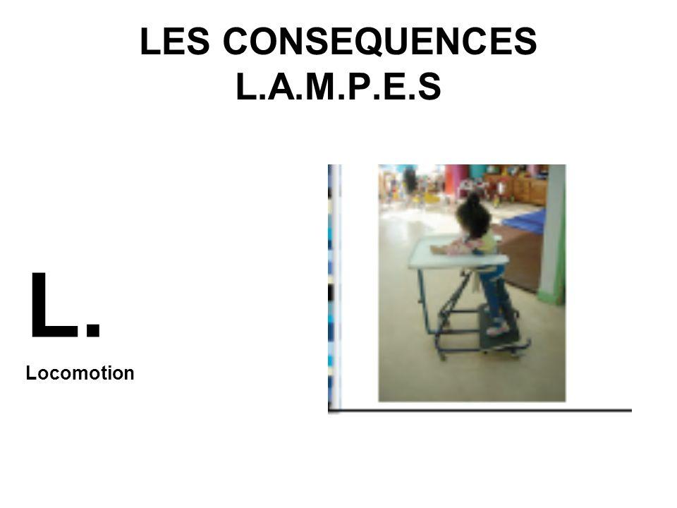 LES CONSEQUENCES L.A.M.P.E.S S.
