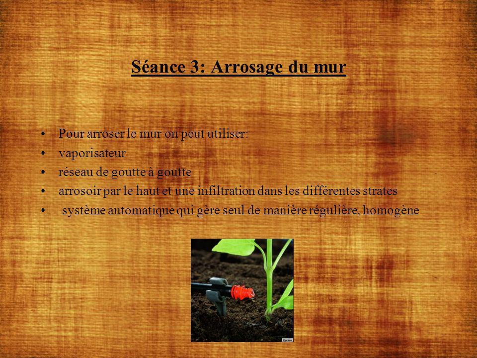 Séance 3: Arrosage du mur Pour arroser le mur on peut utiliser: vaporisateur réseau de goutte à goutte arrosoir par le haut et une infiltration dans l