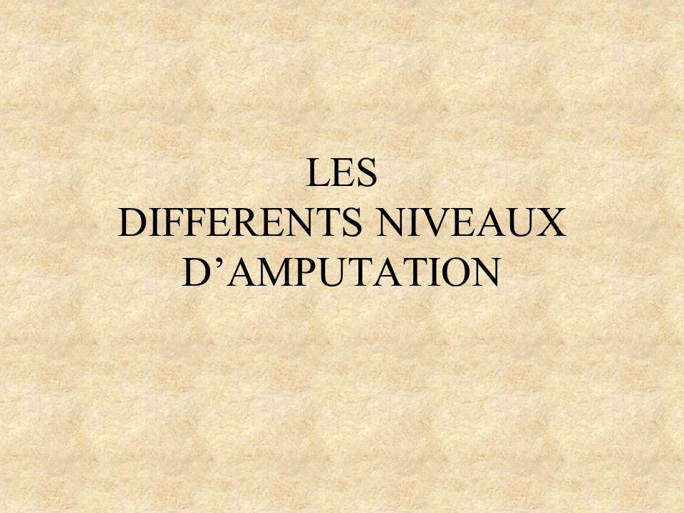 LES DIFFERENTS NIVEAUX DAMPUTATION