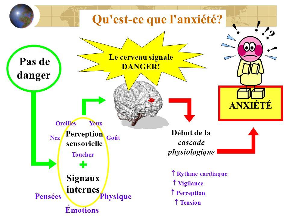 Qu'est-ce que l'anxiété? Le cerveau signale DANGER! Début de la cascade physiologique Rythme cardiaque Tension Vigilance Perception ANXIÉTÉ Perception