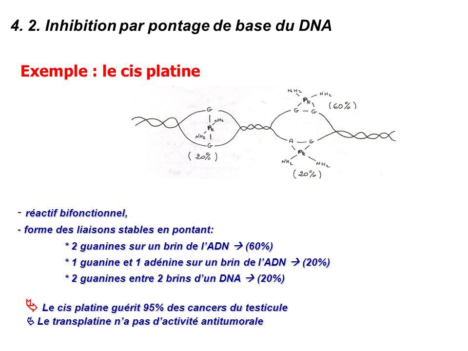 4. 2. Inhibition par pontage de base du DNA Exemple : le cis platine réactif bifonctionnel, - réactif bifonctionnel, - forme des liaisons stables en p