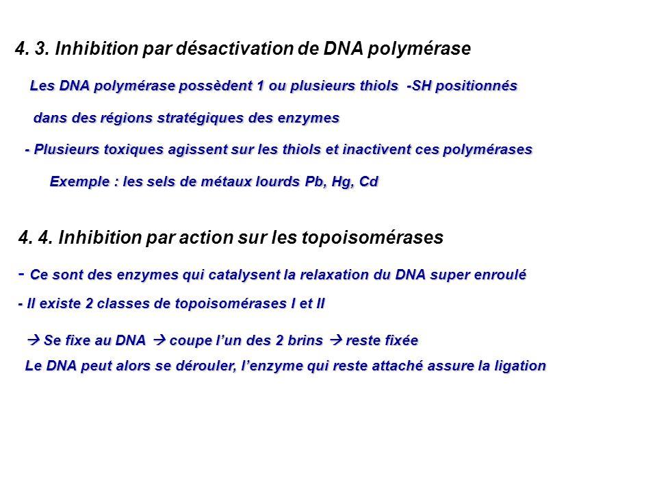 4. 3. Inhibition par désactivation de DNA polymérase Les DNA polymérase possèdent 1 ou plusieurs thiols -SH positionnés dans des régions stratégiques