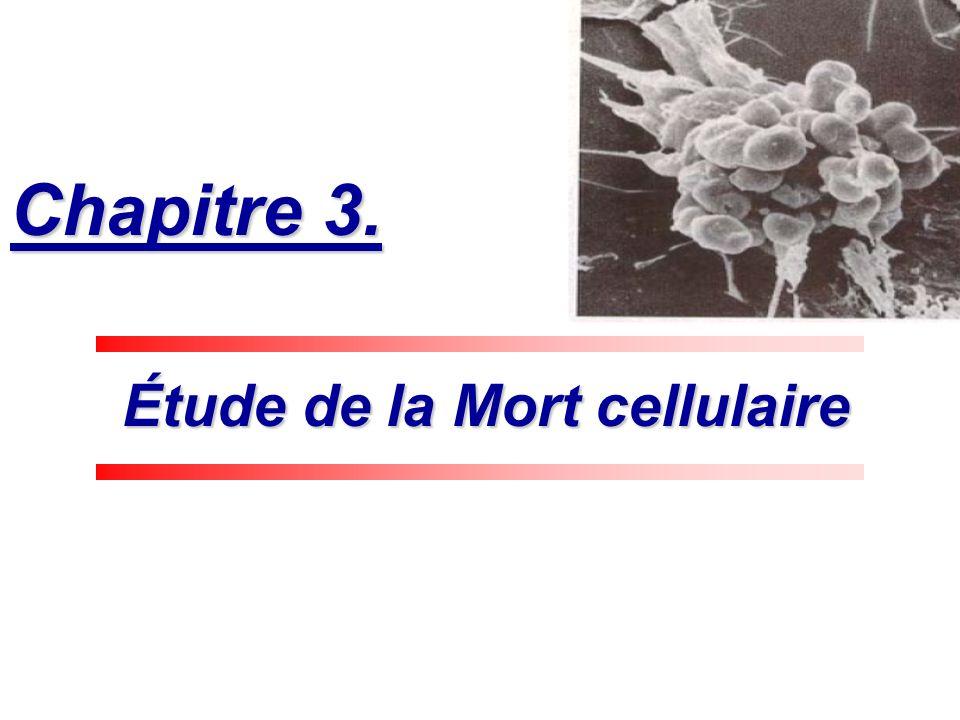 Étude de la Mort cellulaire Étude de la Mort cellulaire Chapitre 3.
