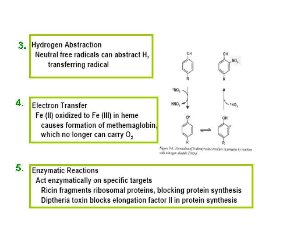 Effets des toxiques sur les molécules cibles 3. 1.