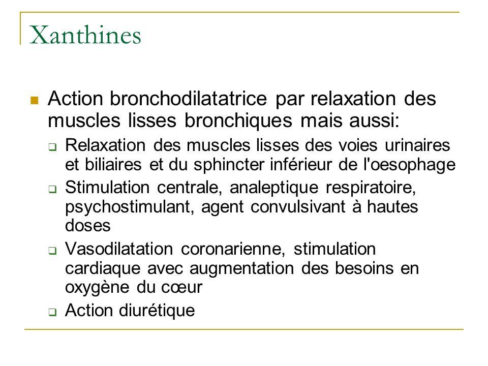 Xanthines Action bronchodilatatrice par relaxation des muscles lisses bronchiques mais aussi: Relaxation des muscles lisses des voies urinaires et bil